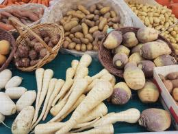 Navets, pommes de terre, panais, topinambours, carottes