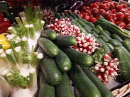 Rayon légumes : fenouil, radis, courgette, tomate...