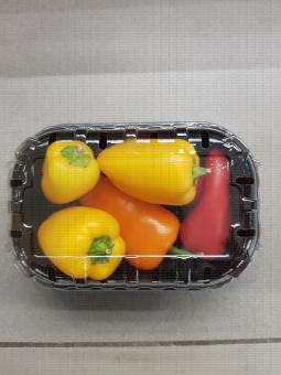 Barquette plastique de poivrons (jaune,orange et rouge)