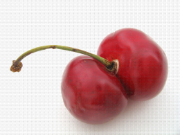 Cerise, fruit double