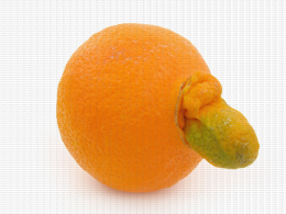 Orange, malformation