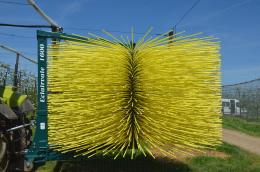 Eclairvale® modèle 1600 téléescopique - Outil d'éclaircissage mécanique des fruits, tige jaune