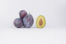 Variété de prune : Presenta