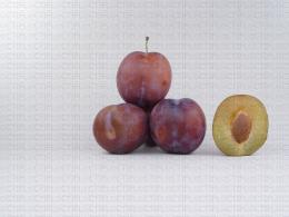 Variété de prune : Royale
