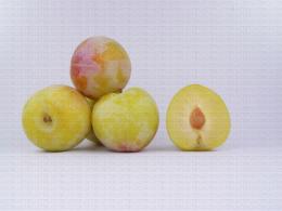Variété de prune : Rubynel