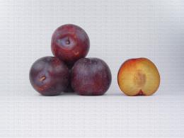 Variété de prune : Souvenir