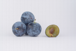 Variété de prune : Ubexy