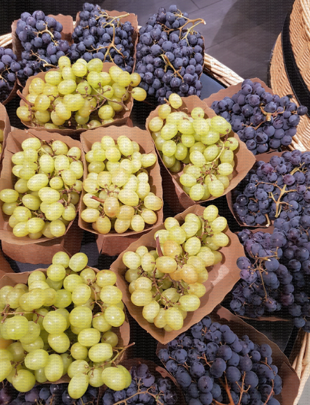 Barquettes en carton de grappes de raisin