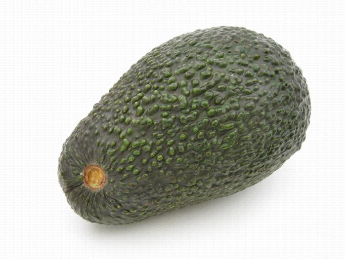 Avocat, sans pédoncule