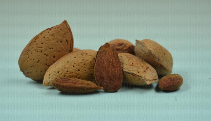 Ferragnès, variété d'amande