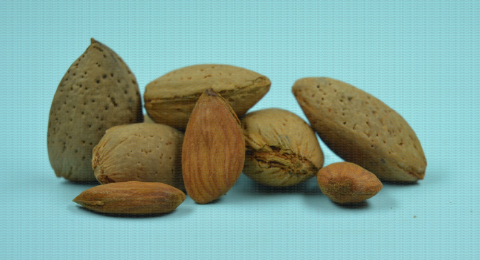 Mandaline : variété d'amande