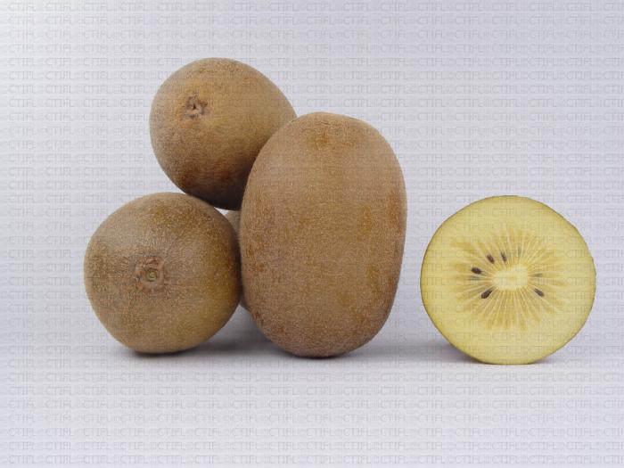 Variété de kiwi : Jintao