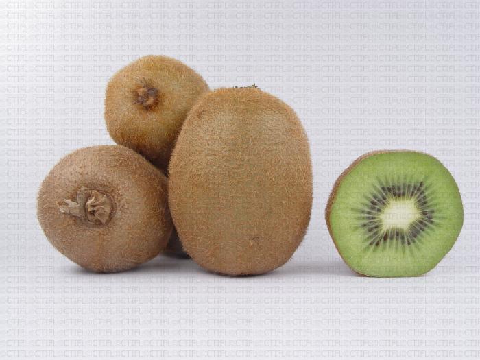 Variété de kiwi : Hayward