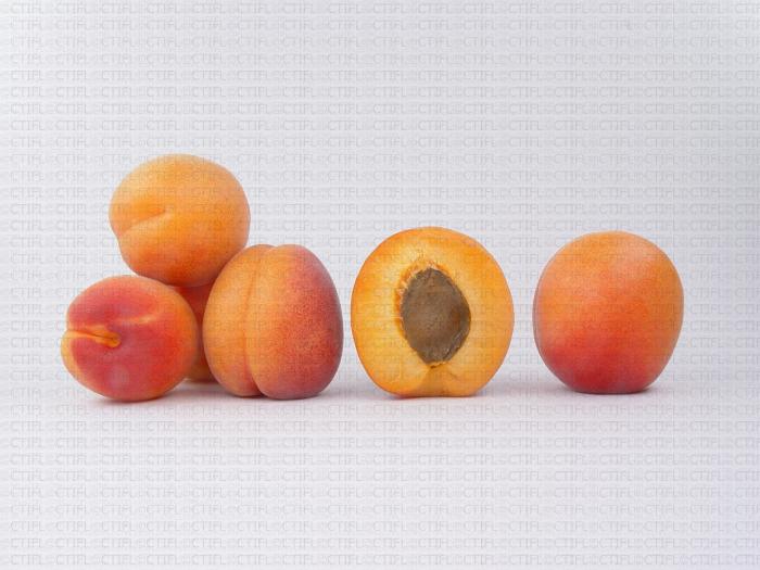 Variété d'abricot : Tsunami