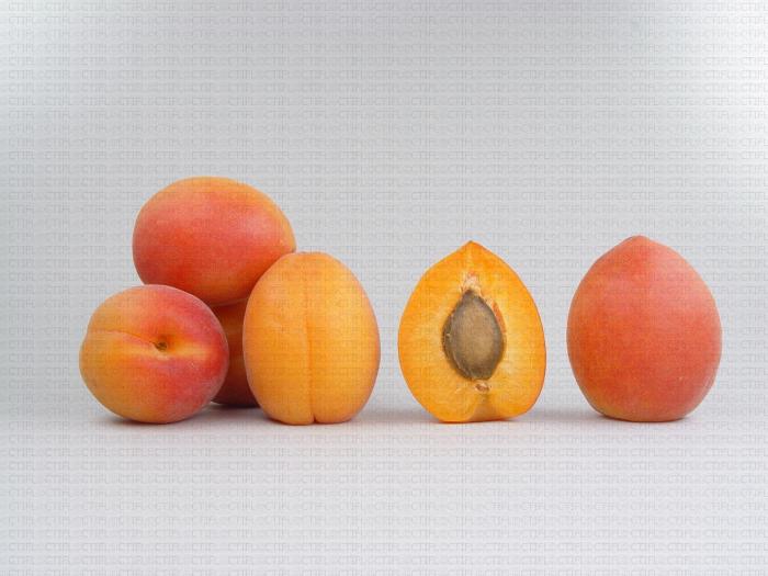 Variété d'abricot : Wondercot